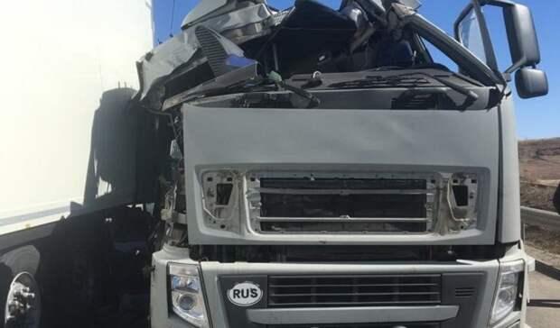 Натрассе вОренбуржье столкнулись грузовики «Вольво» и«Мерседес»