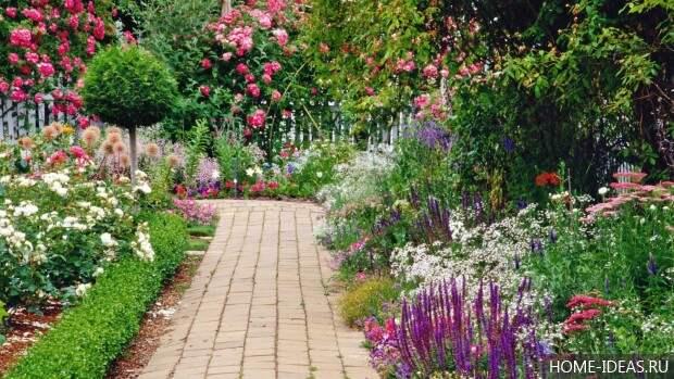 дорожка в красивом саду