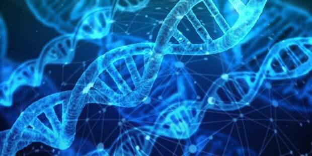 Ученые изобрели в 2020 году: тест на болезнь Альцеймера, генную терапию болезней крови, новые препараты против рака и еще много всего