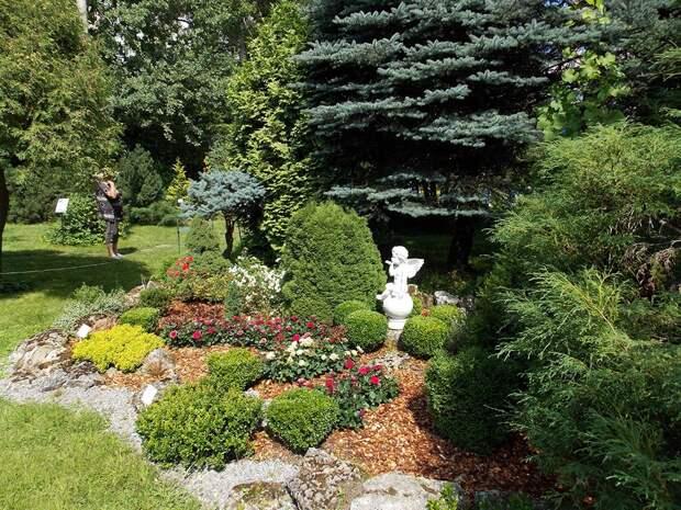 В Ботаническом саду отметят середину лета
