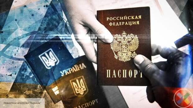 Долгошапко пояснила, почему могут приостановить выдачу паспортов России для жителей ДНР