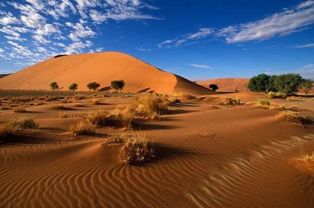 Великие тайны пустынь Земли