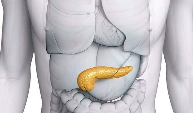 Рецепты для лечения поджелудочной железы: только натуральные средства