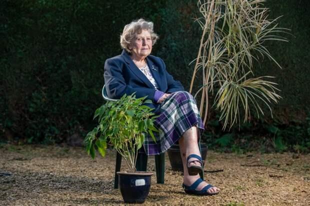 Съела сземлей: старушка выжила, благодаря комнатному растению