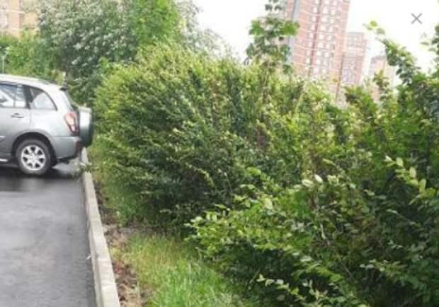 Строительный мусор на улице Соловьиная Роща убран – управа