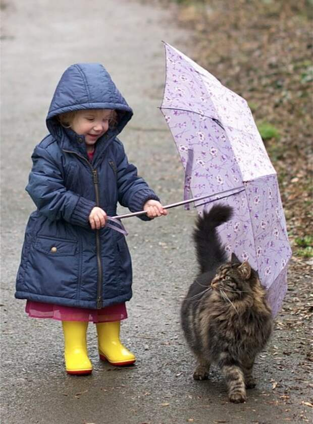 Котятки и ребятки (17 фото)