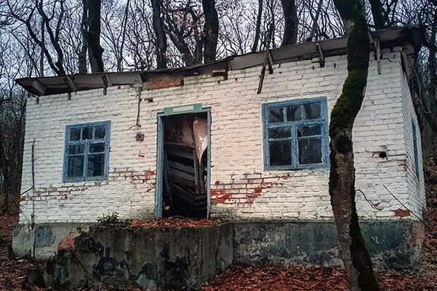 Дети исчезали в подвале. Ужасающая история пионерлагеря на Кавказе