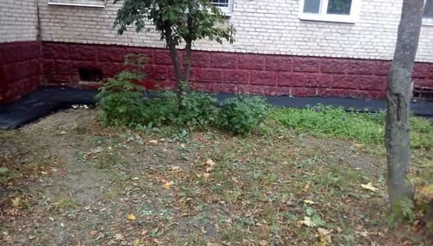 Сотрудники УК Подольска отремонтировали отмостки двух многоквартирных домов