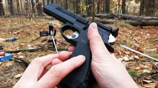 Палка, которая стреляет: какое оружие в России можно приобрести без лицензии