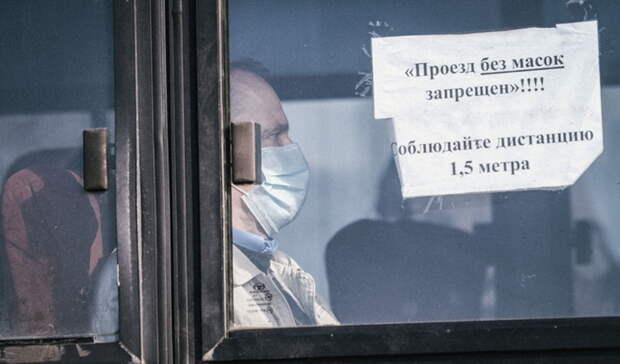 Политолог назвал реакцию российских властей на пандемию соразмерной