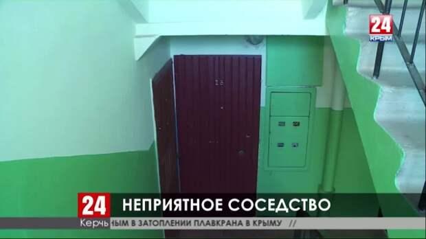 Жители керченской многоэтажки страдают из-за соседа, приютившего десяток кошек