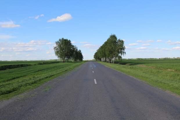 Халатность Украины и водная блокада привели к загниванию Днепра в новых местах