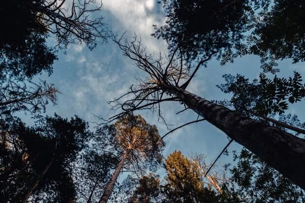 Тверской фотограф показал в своих снимках красоту родного края