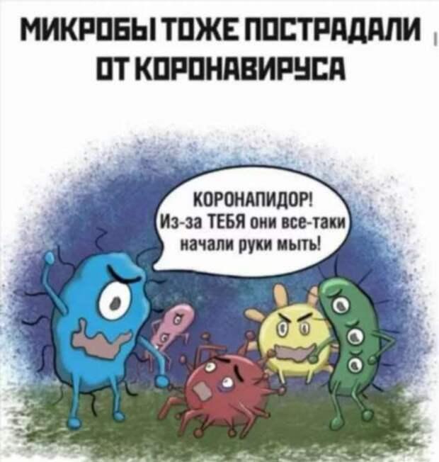 Демотиваторы про коронавирус с надписями. Подборка chert-poberi-dem-koronavirus-chert-poberi-dem-koronavirus-44120625062020-13 картинка chert-poberi-dem-koronavirus-44120625062020-13