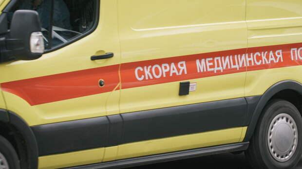Две девочки пострадали встолкновении грузовика иВАЗа вРостовской области