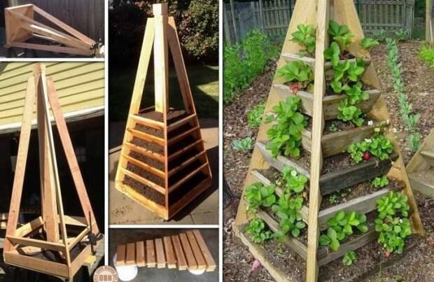 Подобную конструкцию для вертикального озеленения можно приобрести в магазине, а можно сделать своими руками.