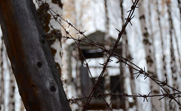 """""""России нужно наконец признать свои преступления"""". Миф о геноциде финнов"""