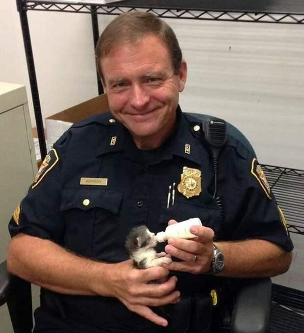 Каждое утро этого полицейского начинается с кормления осиротевших котят