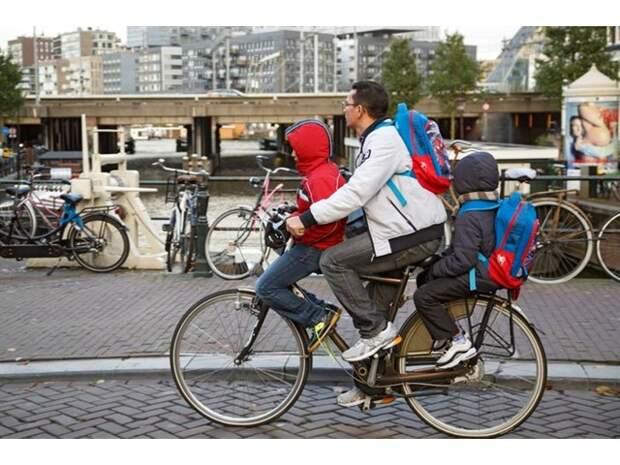 16 деталей жизни голландцев, которые доказывают, что между нашими странами — пропасть
