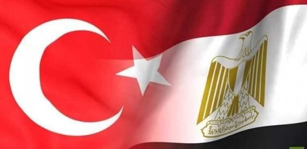 МИД Египта: Турция намеренно дестабилизирует обстановку в Ливии и Сирии