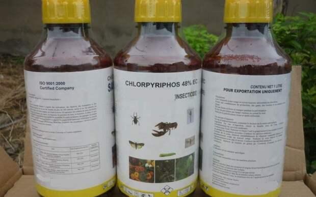 Нейротоксины: химикаты, от которых стоит держаться подальше