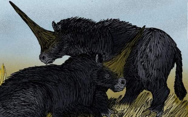Сибирский единорог: ученые нашли неизвестное существо в вечной мерзлоте