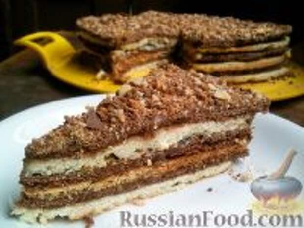 Фото приготовления рецепта: Торт «Новинка» - шаг №12