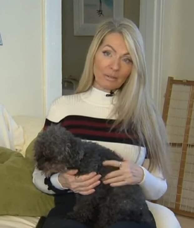 Когда старенькая собака исчезла, хозяйка бросилась на её поиски. А питомица в это время была в лапах хищной птицы