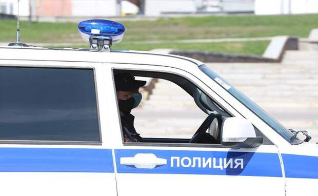 Автомобиль ДПС сбил на зебре мать с ребенком в поселке Чистоозерное