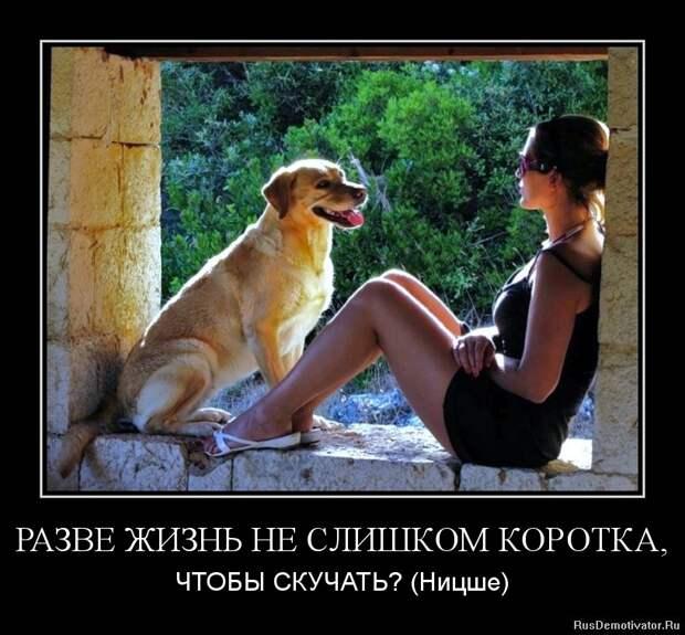 Подборка позитивных, смешных и веселых демотиваторы для классного настроения из нашей жизни