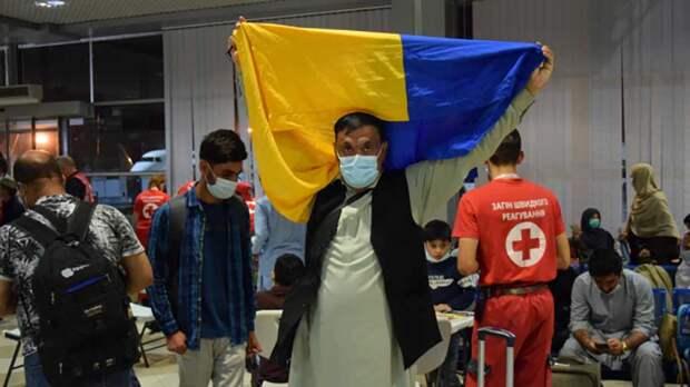 Украина принимает афганских беженцев для операций против РФ