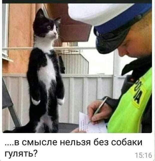 После лечения:  - Доктор, а как вы узнали, что у меня повышенное давление?...