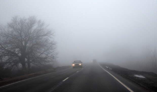Метеорологи ожидают заморозки вСвердловской области