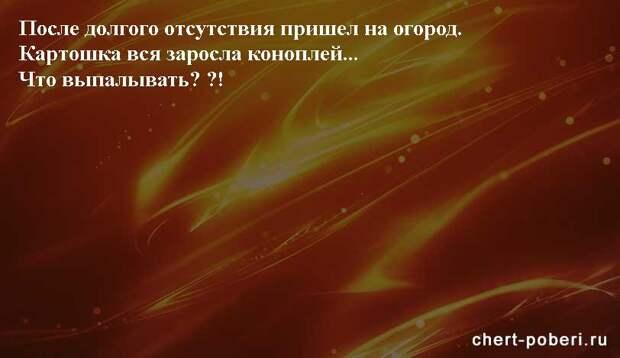 Самые смешные анекдоты ежедневная подборка chert-poberi-anekdoty-chert-poberi-anekdoty-01020617092021-16 картинка chert-poberi-anekdoty-01020617092021-16