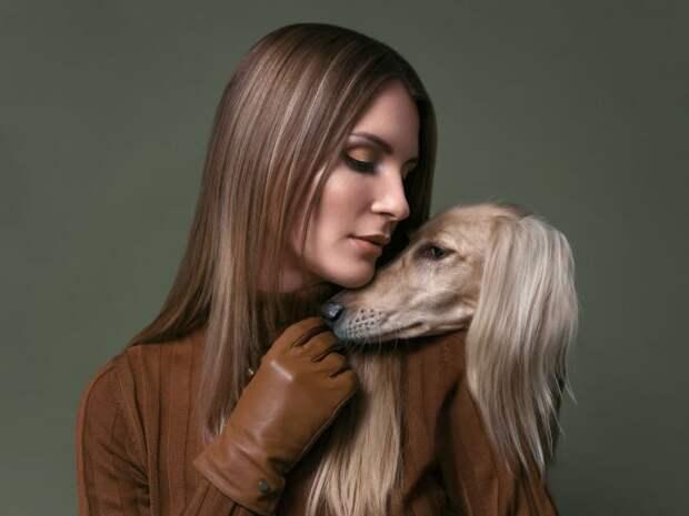 17 удивительных портретов собак отАлександра Хохлова