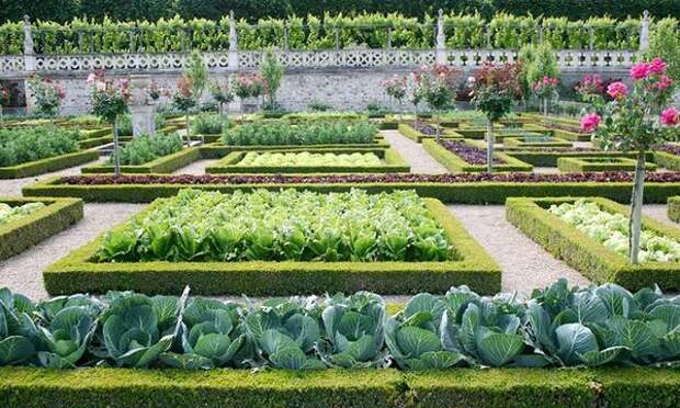 Декоративный огород в Виландри. Фото с сайта stroy.pro