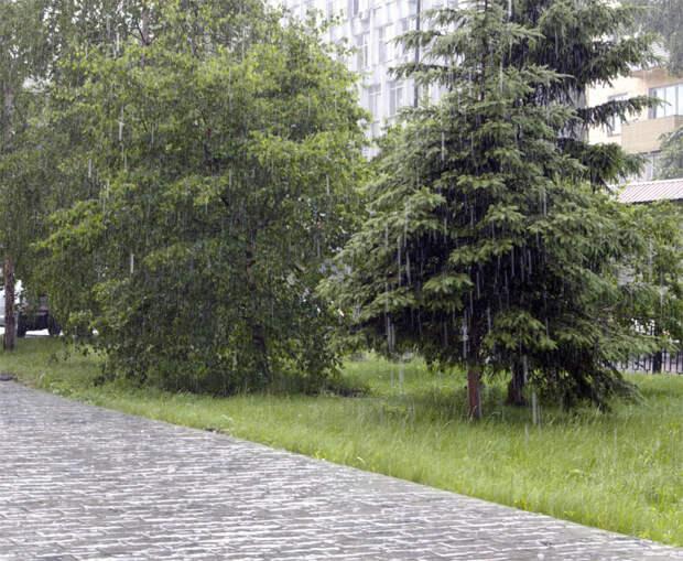 Заморозки, ливневые дожди, грозы ожидаются в Приангарье в ближайшие сутки