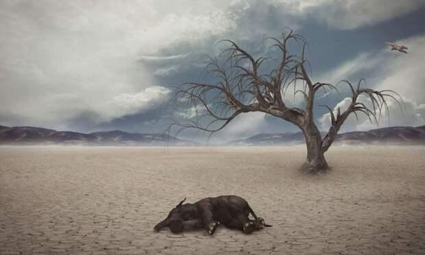 Массовые вымирания на Земле оказались цикличны