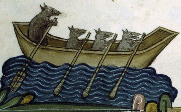 Крысы бегут на корабль: ожидание кровавой потехи?
