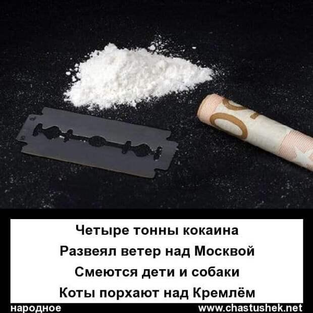 На изображении может находиться: текст «четыре тонны кокаина развеял ветер над москвой смеются дети и собаки коты порхают над кремлём народное www.chastushek.net»
