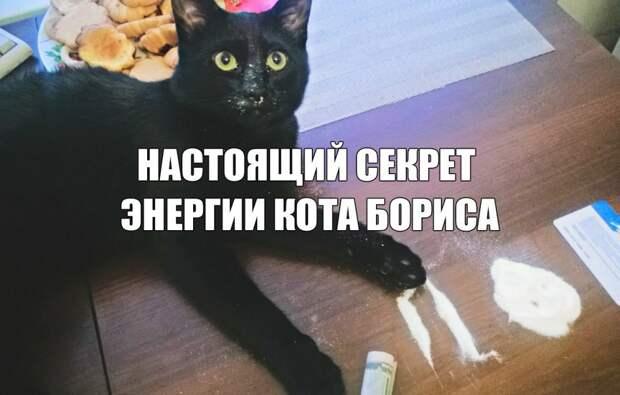 kRdeyqxSlmE