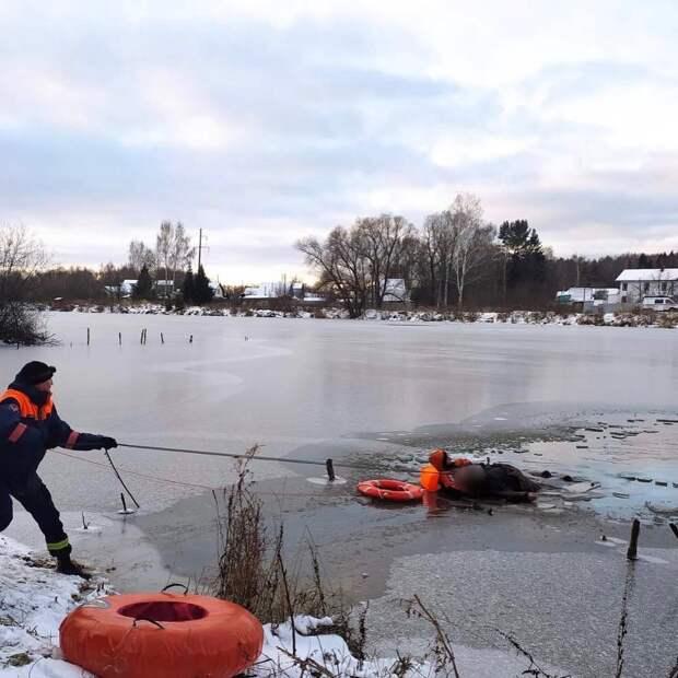 Рыбак утонул в Завьяловском районе Удмуртии