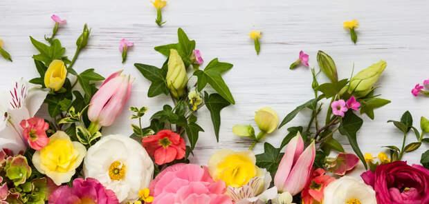Ноты цветов в парфюмерии