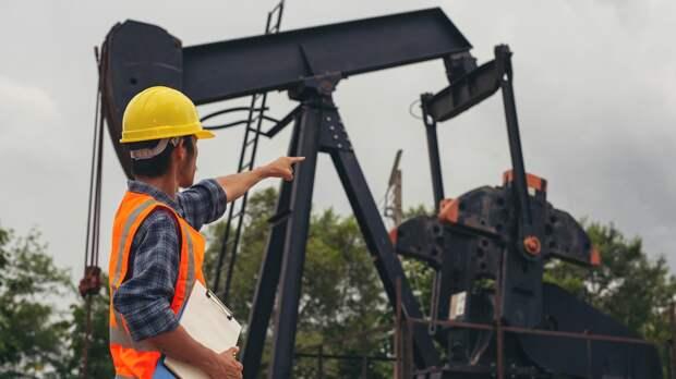 Финляндия сократила импорт нефти РФ из-за перехода на «зеленую» энергетику