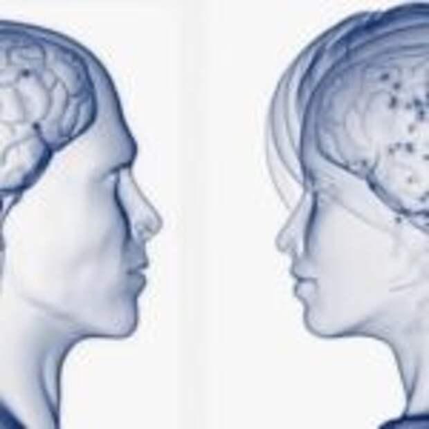 В чем же отличия между мужским и женским мозгом?