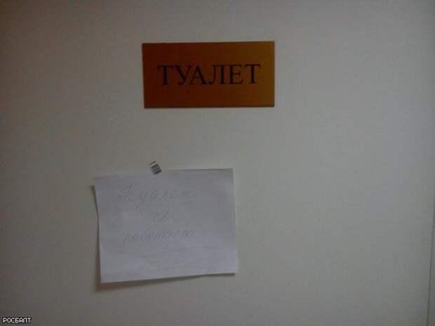 Россияне выбирают худший школьный туалет
