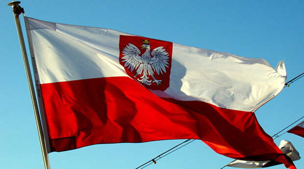 Россияне высмеяли попытки Польши остановить «СП-2» чужими руками