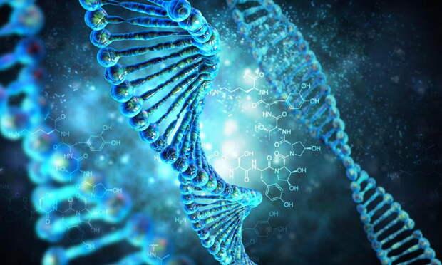 Российские ученые нашли генетические маркеры внезапной сердечной смерти