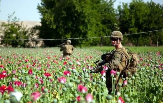 МИД РФ: Разведка США участвует в торговле наркотиками