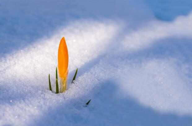 В Удмуртии 24 марта воздух прогреется до +4 градусов